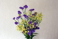 80502gflower