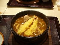 51111udon